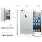 Apple iphone 5 White/Silver 64GB Factory Unlocked